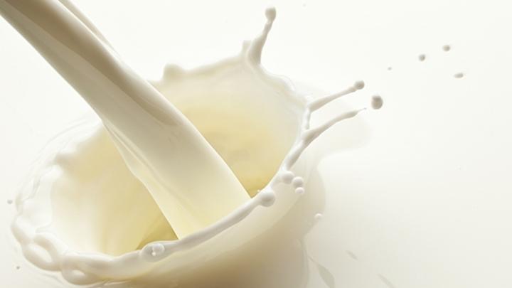 Prefeitura de São Miguel realiza segundo curso sobre fabricação caseira de derivados do leite